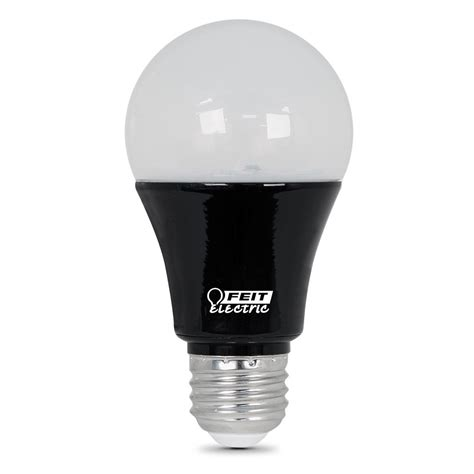 led light bulbs for the home feit electric 9w equivalent black light a19 led