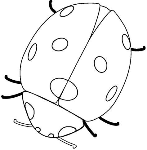 ladybug coloring free animal coloring pages sheets ladybug