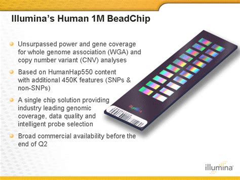bead chip table of contents