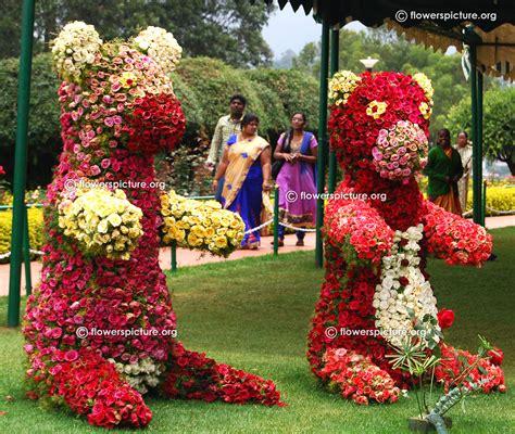 flower and garden show ooty garden flower show and varieties