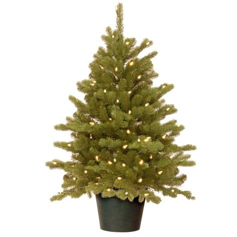 small trees real national tree company feel real hton spruce small