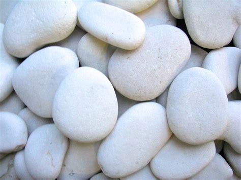white garden rocks white pebble flat small olimar decorative
