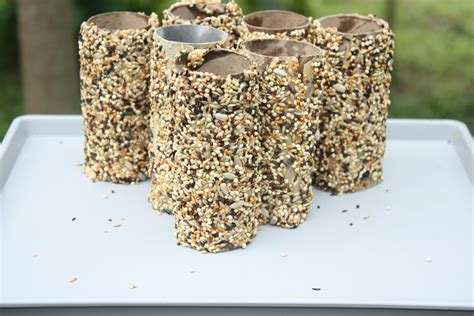 recycled toilet paper roll crafts recycled toilet paper roll crafts bird feeder