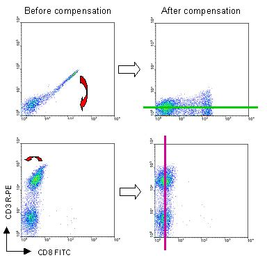 flow cytometry compensation flow cytometry facility compensation