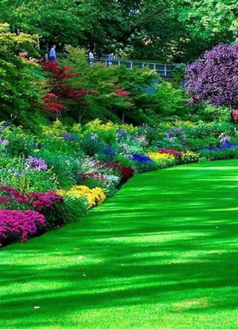 beautiful flower garden photos 157 best garden images on landscaping gardens