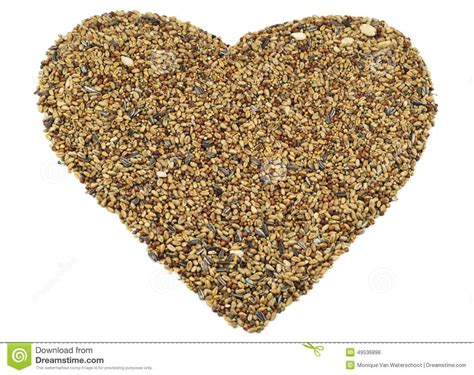 how seed are made bird seed stock photo image 49536898