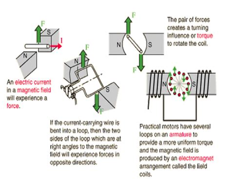 Principle Of Electric Motor by Electrical And Electronic Engineering Forum Electric