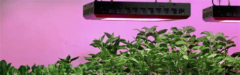 led grow light bulbs grow lights and plant lights for indoor ls plus