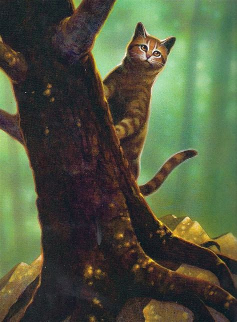 cat painting guide 30 best ideas about warrior cat pics on cats
