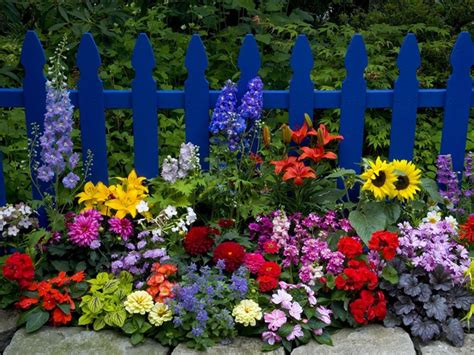 images of beautiful flower gardens beautiful flower garden pictures photos and images for