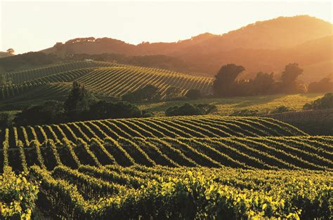 best hotels in napa valley most popular places to stay in napa valley