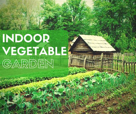 growing vegetable garden indoor vegetable gardening 37 edibles you can grow
