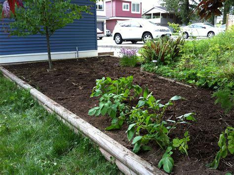 how to make home vegetable garden triyae backyard vegetable garden design ideas