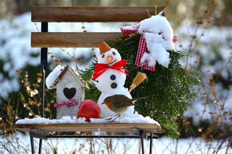 Der Garten Im Winter by Der Garten Im Winter Ein Kleiner Ratgeber