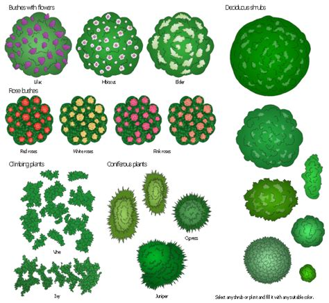 bushes and trees design elements bushes and trees bushes