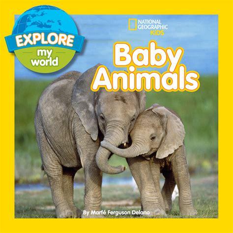 animal picture book explore my world marf 233 ferguson delano