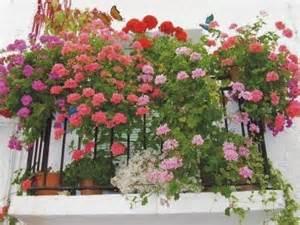 decorar jardines con rejas decoracion de balcones