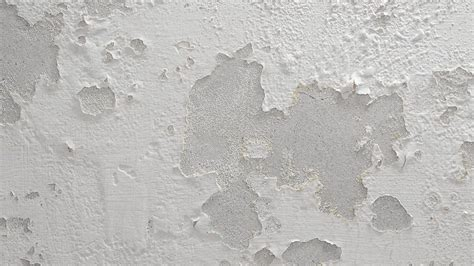humedad paredes interiores humedad en las paredes soluciones y remedios para eliminarla