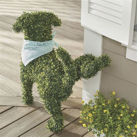Software To Design Kitchen decorative peeing dog topiary the green head