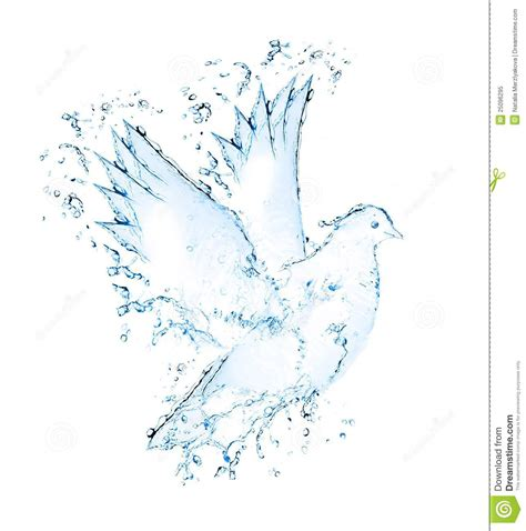 what are water made out of dove made out of water splashes royalty free stock photo