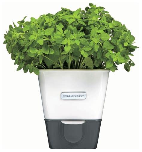 indoor herb planter self watering indoor herb planter contemporary indoor