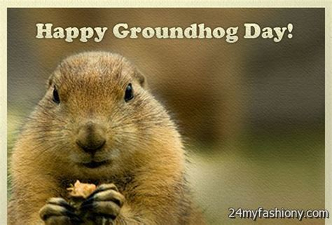 how to groundhog day groundhog day images 2016 2017 b2b fashion