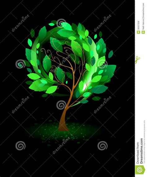 tree on black background green tree on a black background royalty free stock photos