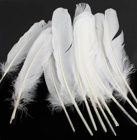 feather crafts for white feather quills for crafts package of 12 feathers