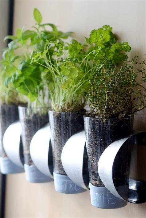 indoor hanging garden ideas how to indoor herb garden ikea hack 187 curbly diy design