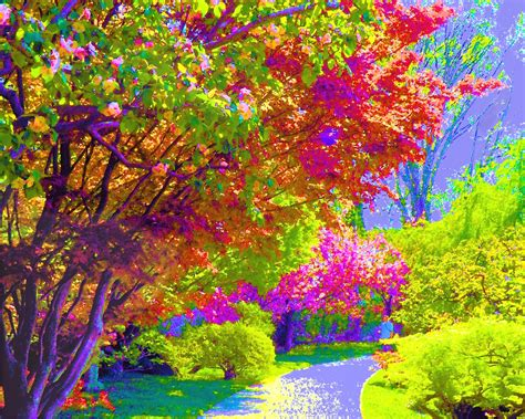 colorful painting colorful trees painting background colorful background