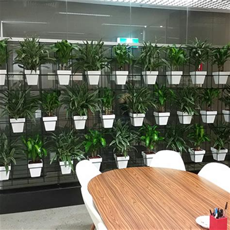pot plant vertical garden tropical plant rentals