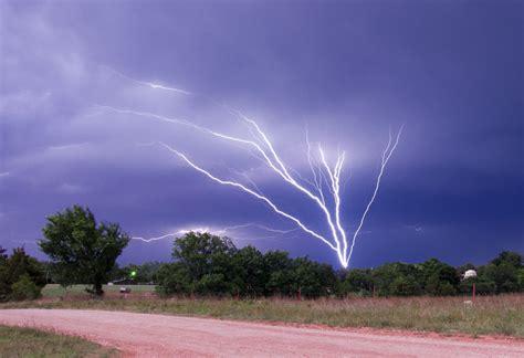 lighting trees tree lightning by bvilleweatherman on deviantart