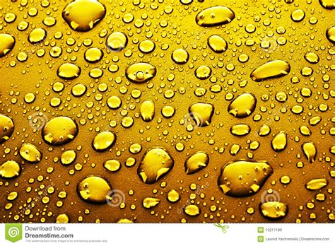 gold water gold water drops stock photo image 13217180