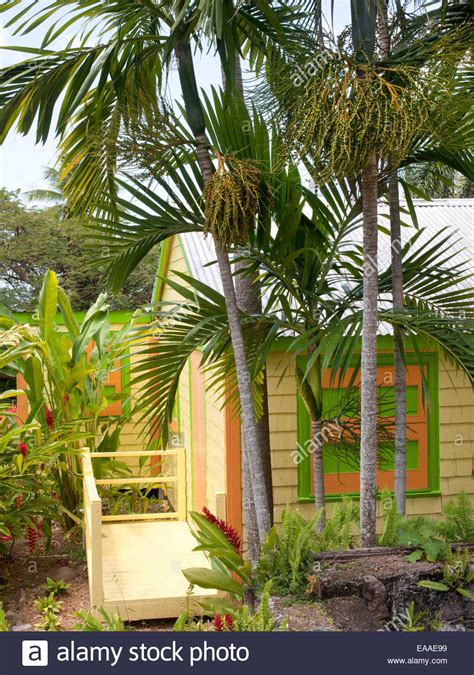 small colored trees brightly colored small wooden house and palm trees on