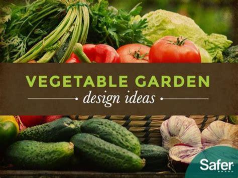 garden food ideas vegetable garden design ideas
