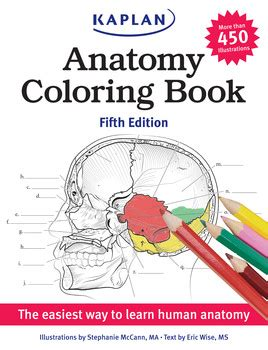 anatomy book with cadaver pictures anatomy coloring book book by mccann eric