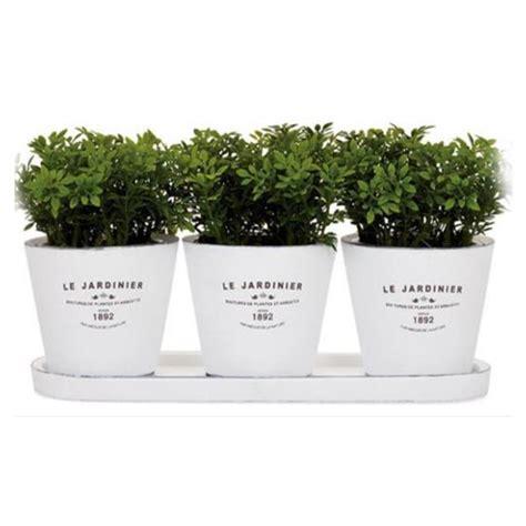 indoor herb planter kitchen indoor herb planters eatwell101