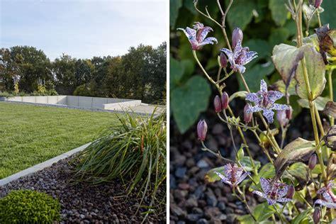 Der Neue Garten by Garten Erster Einblick In Den Garten Mxliving