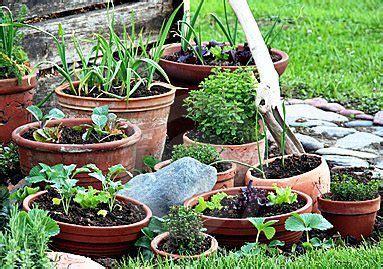 potted vegetable garden container vegetable gardens growing in pots indoor or