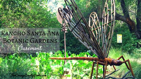 rancho santa botanic gardens claremont botanical gardens pin by kathy honey sleight