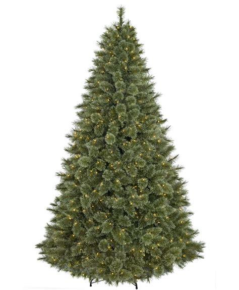 chrsitmas tree classic tree tree classics