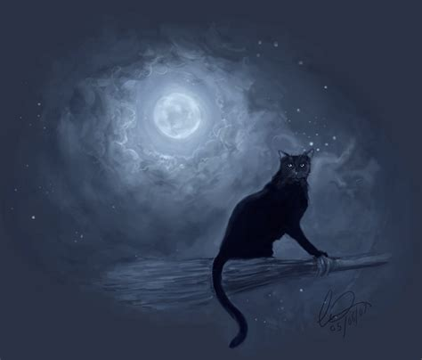 witches cat the witches cat by howlinghorse on deviantart
