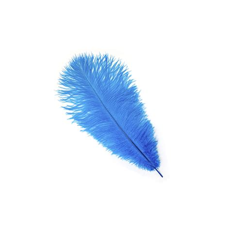 feather with ostrich feathers drabs selected ostrich feather types