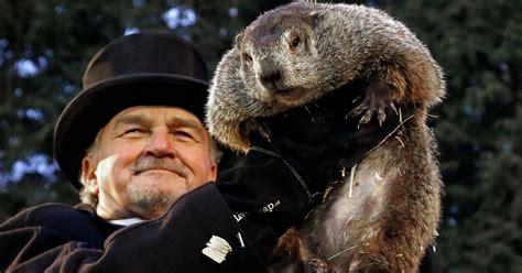 groundhog day usa on groundhog day goes rogue