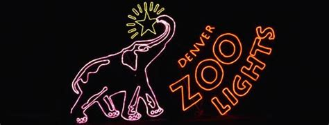 denver zoo lights coupons zoo coupons 2017 2018 best cars reviews