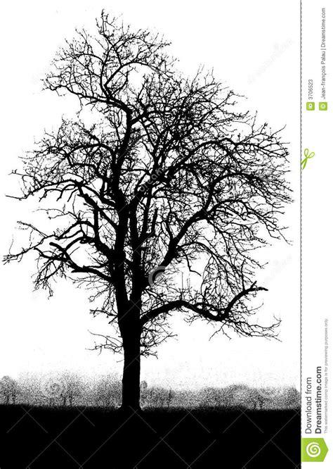 black mini tree black and white tree stock image image of black alone