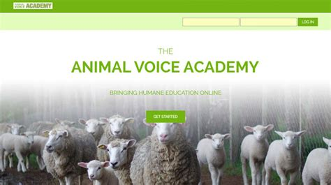 animal academy introducing animal voice academy animal forum