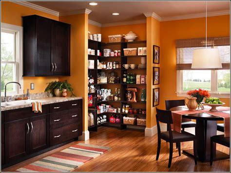 custom kitchen cabinet ideas ideas for custom kitchen cabinets roy home design