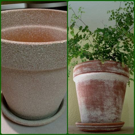spray painting terracotta pots pin by megan uhler on hibernia landscaping