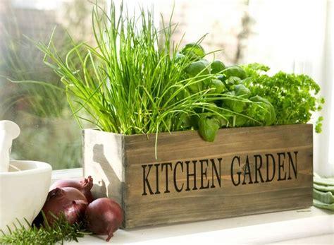 indoor herb planter white herb garden planter 2 diy projects